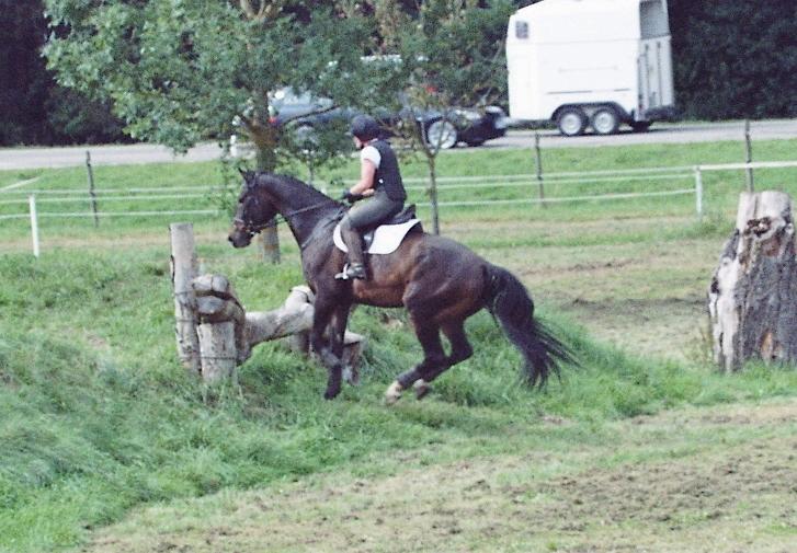 Laddie 201109-4